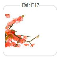 personaliza-31